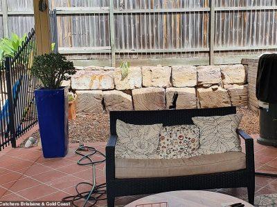 Дали можете да ја пронајдете змијата што се крие во овој двор?