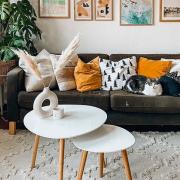 Како да го освежите ентериерот со декоративни перници?