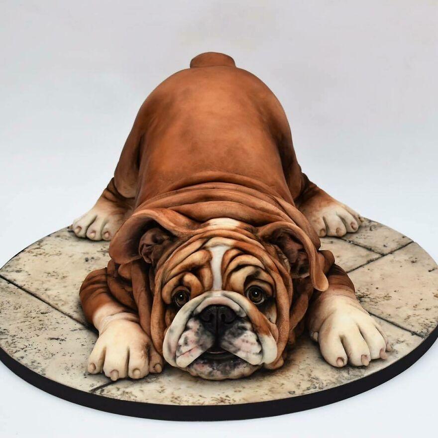 Неверојатно реалистични торти кои ќе ве воодушеват