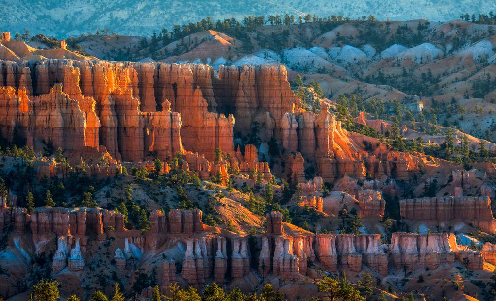 Најубавата џунгла од камени кули