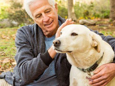 Истражувањата откриваат: Кучињата и луѓето стареат на ист начин
