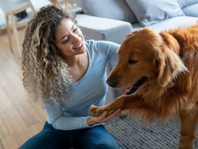 Зошто кучињата ги ставаат своите шепи на вас?