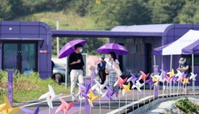 Јужнокорејски остров обои град во виолетова боја за да привлече туристи