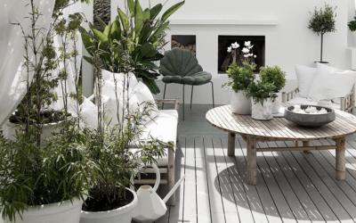 Украсете го вашиот мал балкон оваа пролет: Погледнете го нашиот избор и инспирирајте се!