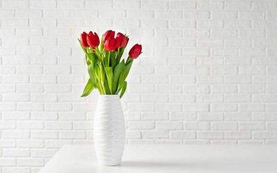 3 растенија што носат среќа, љубов и здравје