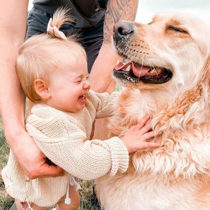 Фотографии кои ја прикажуваат неверојатната љубов помеѓу еден златен ретривер и мало девојче