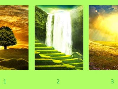 Тест: Изберете слика и откријте го советот што ви е потребен
