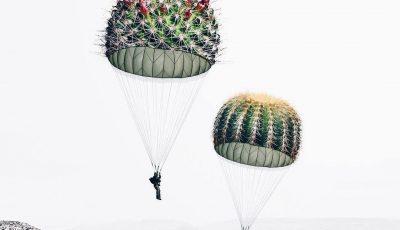 Уметничката Луиза Азеведо комбинира различни предмети за да направи волшебни фотографии