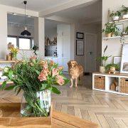 Внесете пролетен оптимизам во вашиот дом со овие неколку совети
