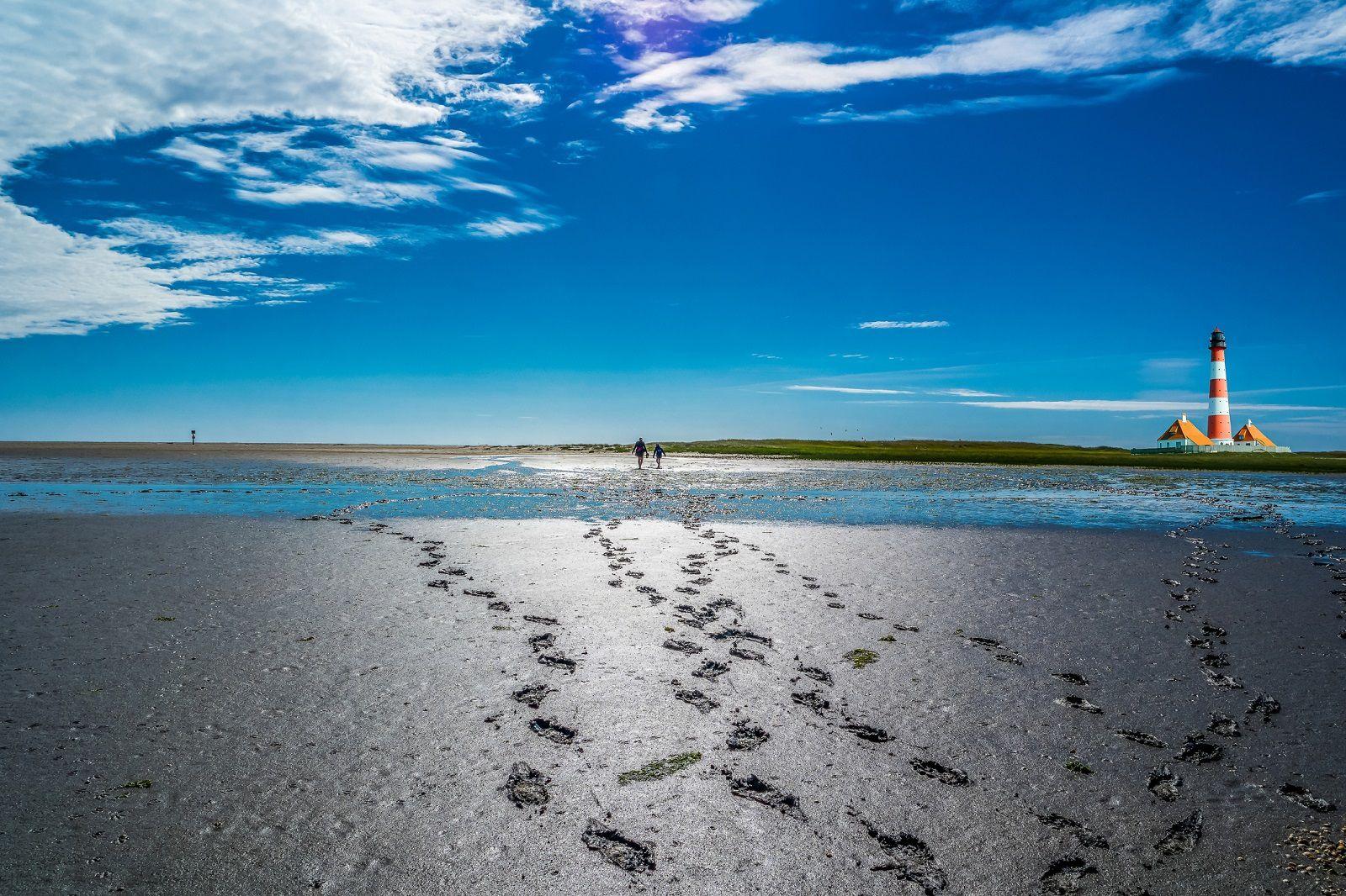 Ваденско Море: Уникатно место на Земјата што изгледа различно секој ден