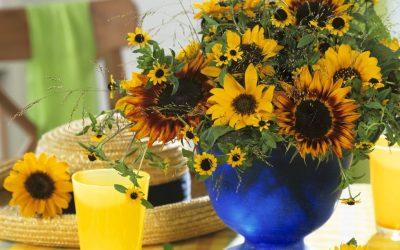 5 идеи како да ги внесете боите на сонцето и на морето во вашиот дом