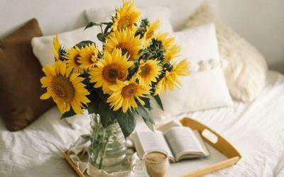 5 совети со кои сончогледите ќе траат подолго во вазна