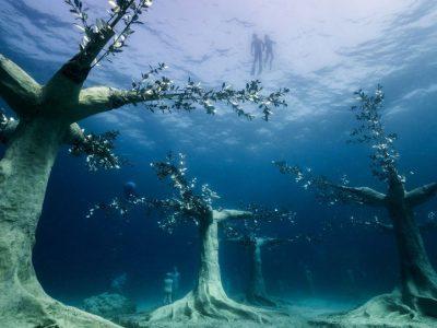 Двесте метри од познатата плажа на Средоземното Море: Првата подводна шума во светот