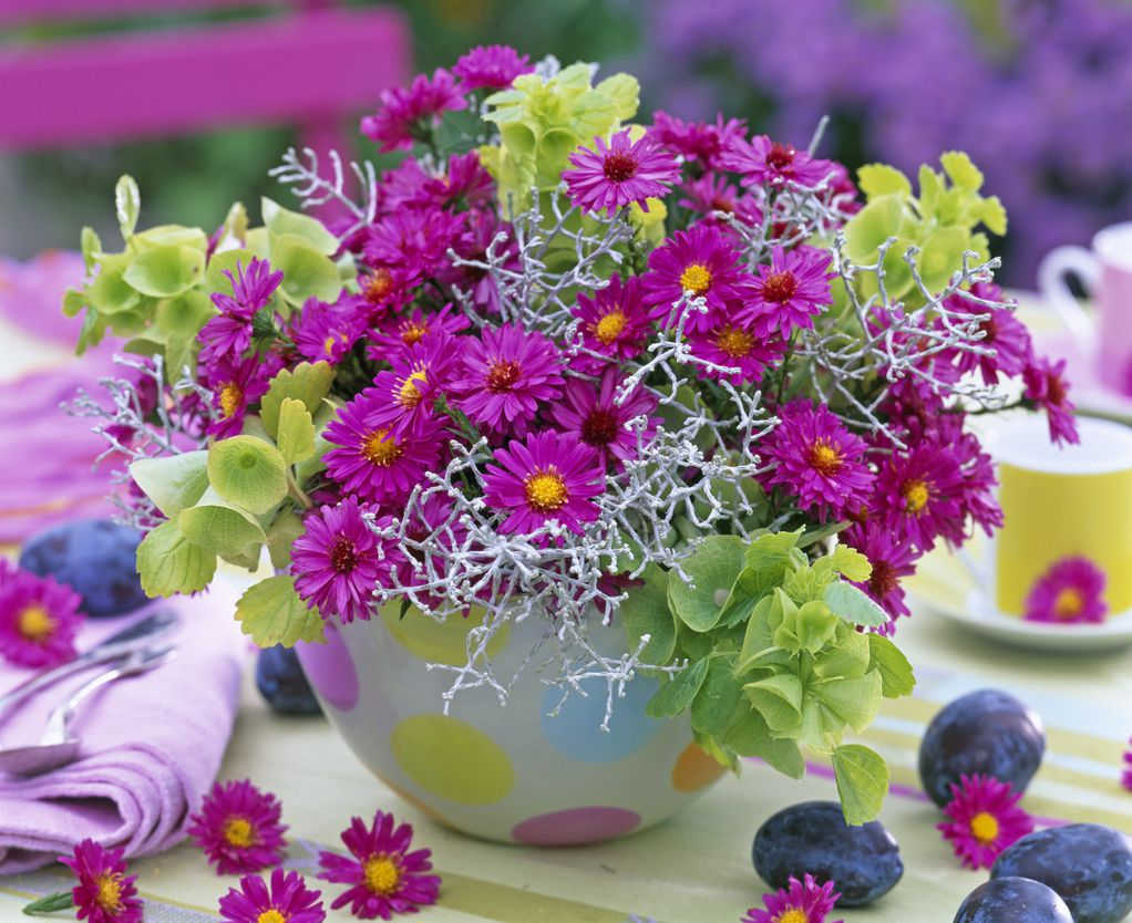 Цвеќиња што цветаат во есен: 4 вида растенија што ќе им успеат и на почетниците