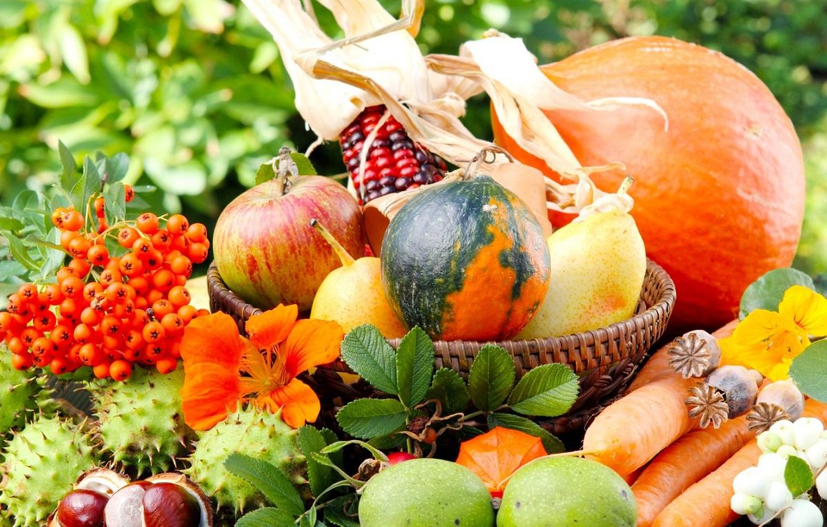 6 есенски намирници за зајакнување на имунитетот
