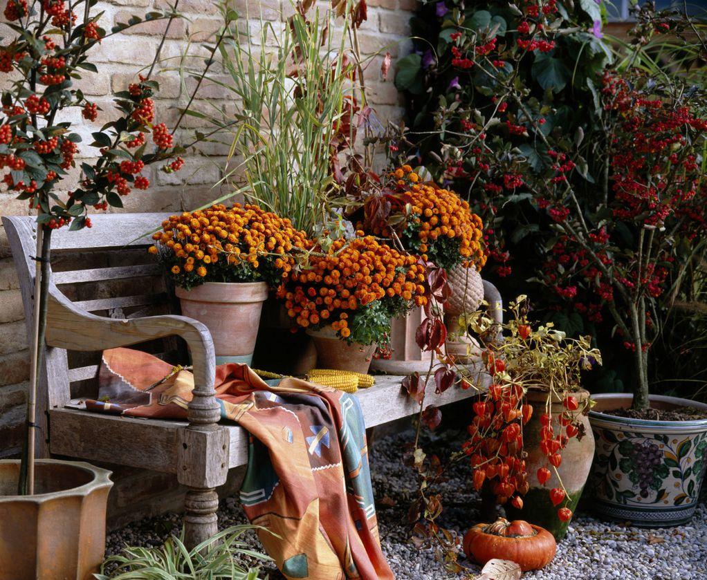 10 фотографии поради кои ќе сакате да ја поминете есента на балконот или во градината