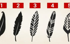 ТЕСТ: Изберете перо и откријте кои се вашите скриени моќи!